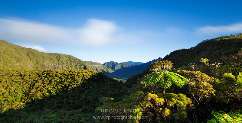 Saisons Réunion
