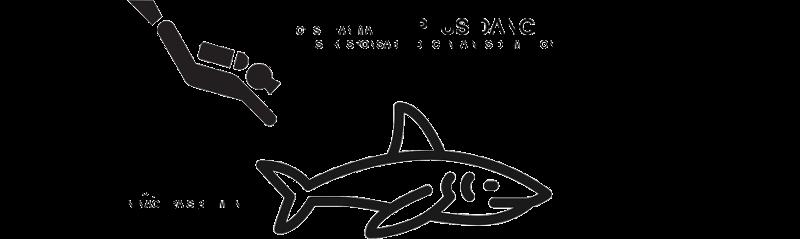 Requin Réunion