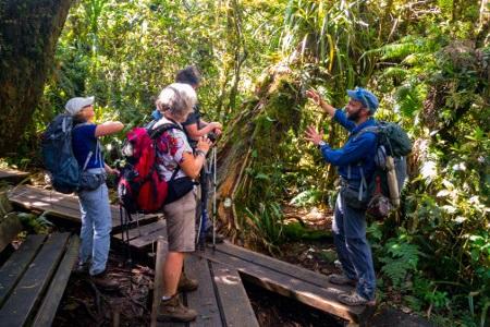 Bureau Montagne Réunion, randonnées à la Réunion